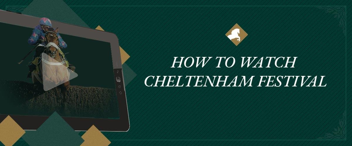 How to watch cheltenham festival